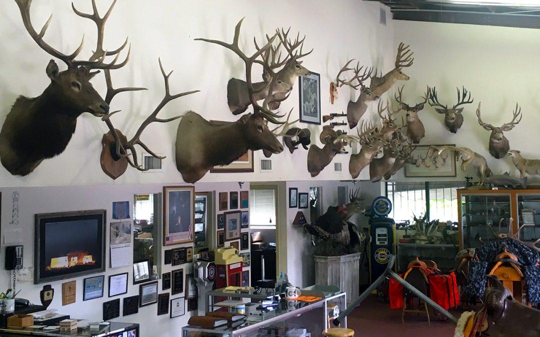 Inside the Davis Tent showroom