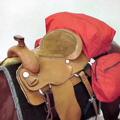 Saddle and packing gear on horse